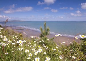 Local Sandy Beach, Shanklin, Isle of Wight